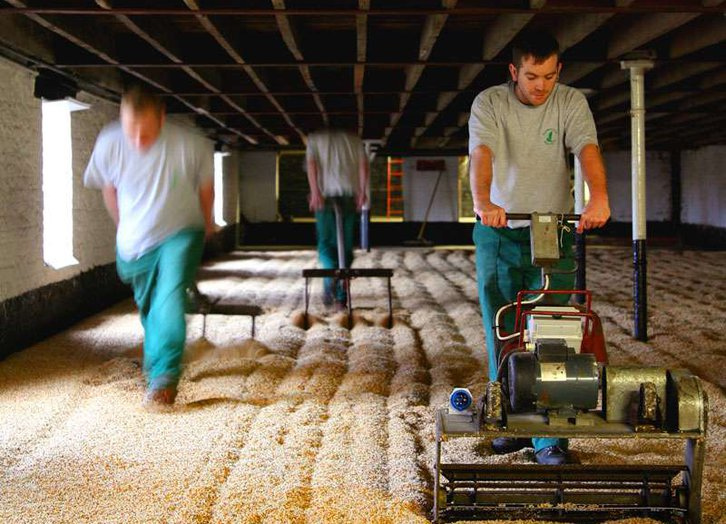 Warminster Maltings - Floormalting